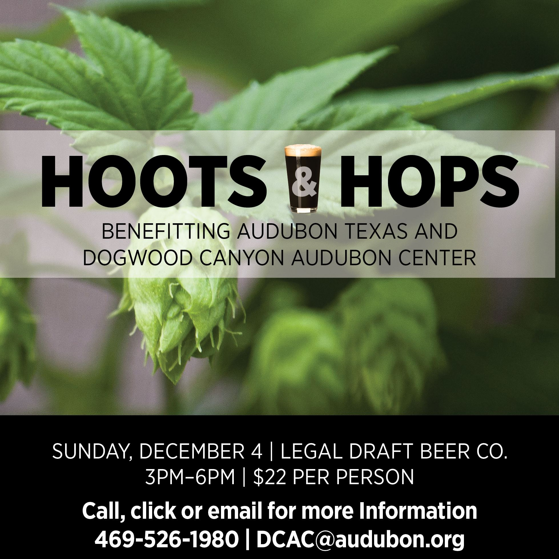 hoots and hops