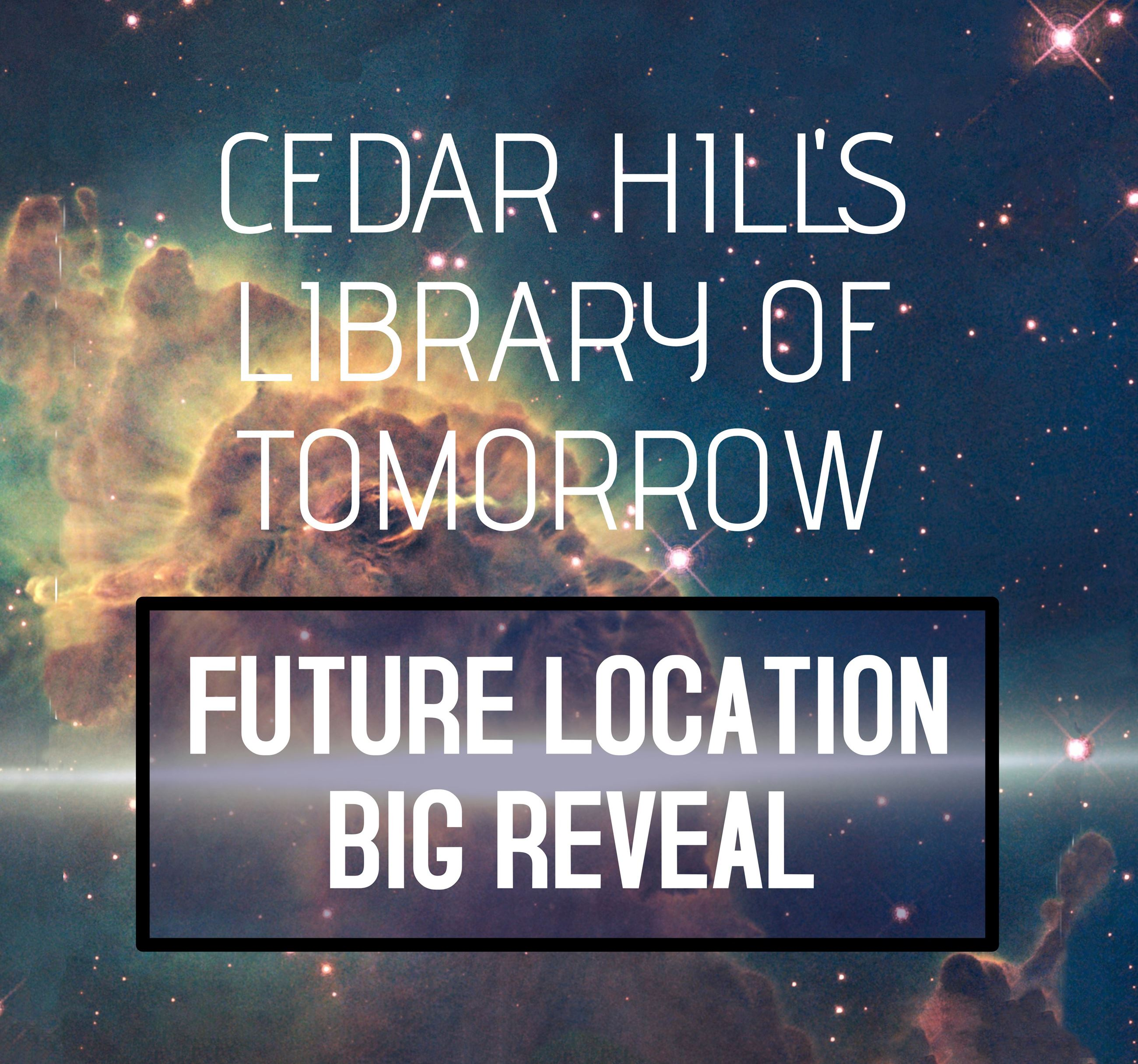 2019 Library Big Reveal