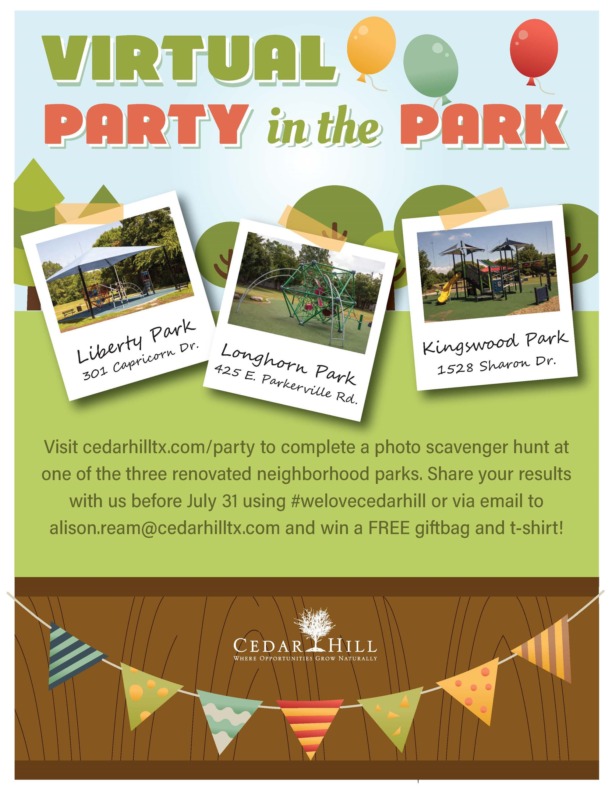 Virtual Party in the Park flyer