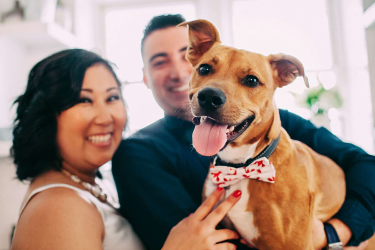 Are You and Your Significant Other Ready to Adopt a Pet? BY SHANNON CASEY