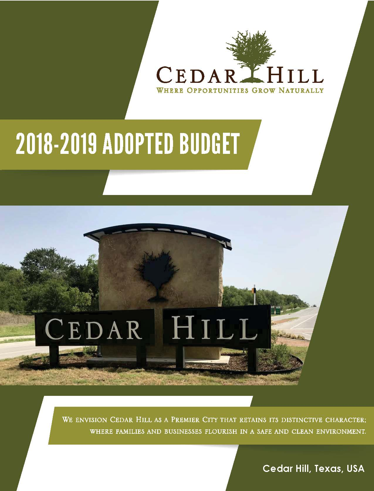 2019 Adopted Budget Cover