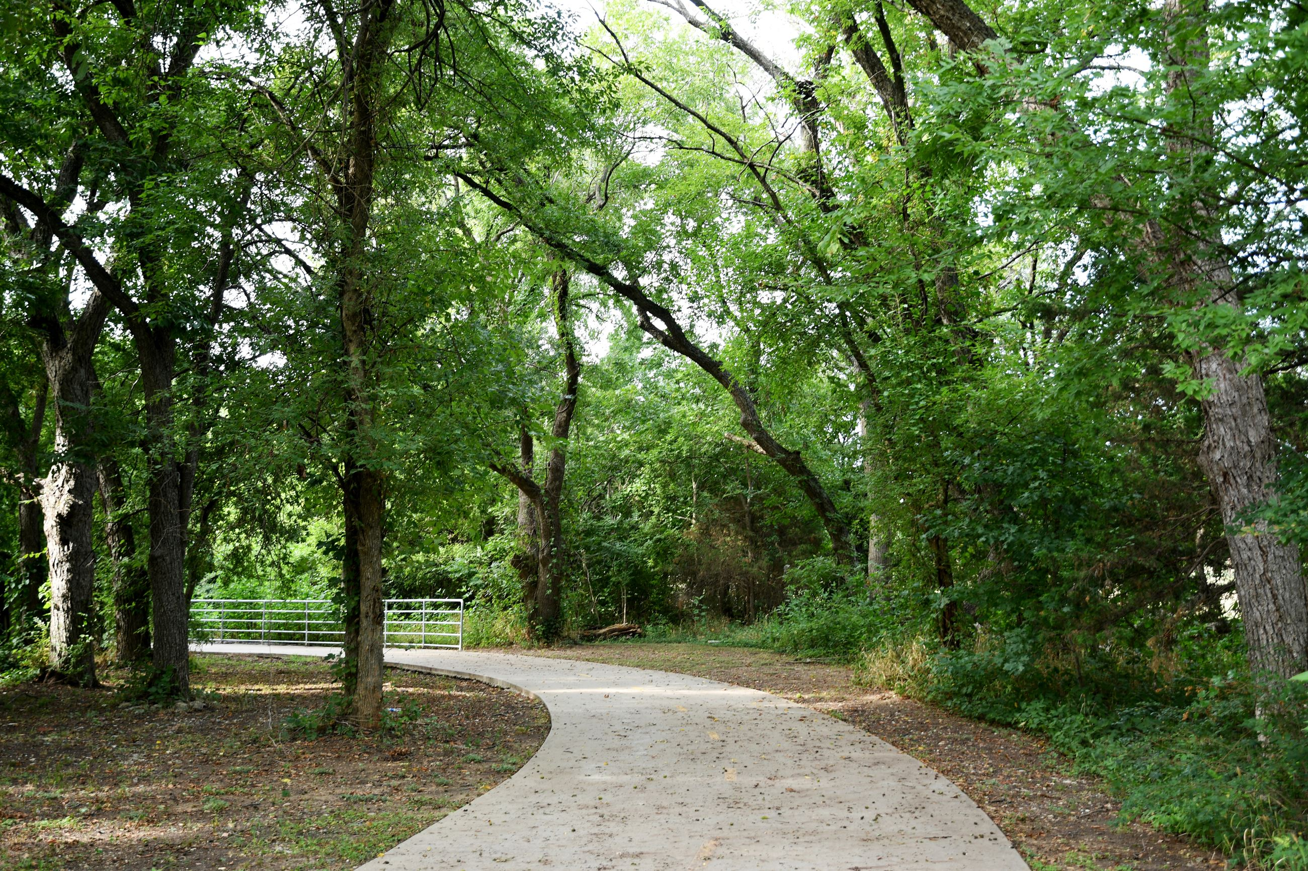Paved trail through trees