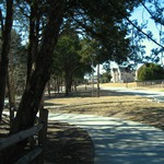 Walking trail at Windmill Hill passes by shade providing trees..jpg